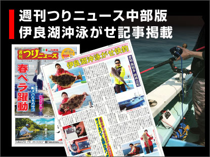 つりニュース中部版(4/9発売)伊良湖沖泳がせ快釣記事掲載